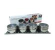 Porta Condimentos em Aço Inox Magnético 5 Peças Kehome